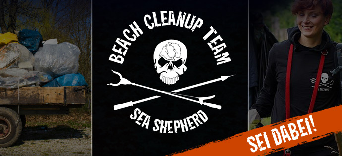 Mitmachen bei Sea Shepherd zu Wasser und zu Land