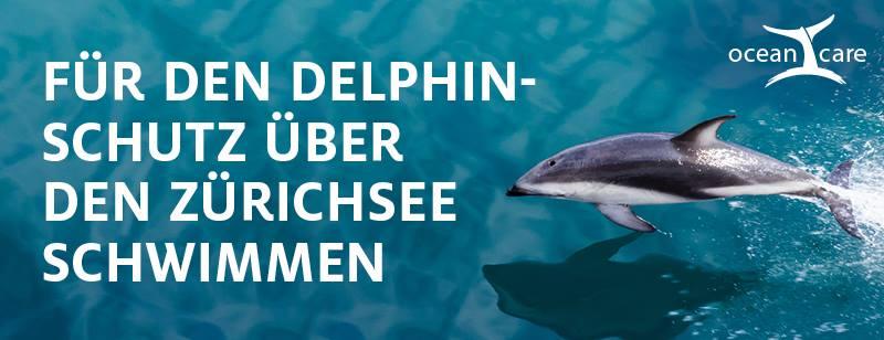 oceancare_delphinschwimmen