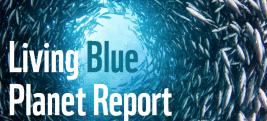 Titel des Living Blue Planet Reports 2015 vom WWF
